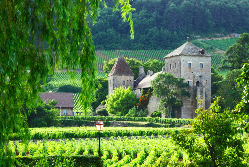 Image of the Dordogne countryside in France